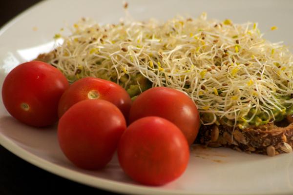 quinoaburger met alfalfa