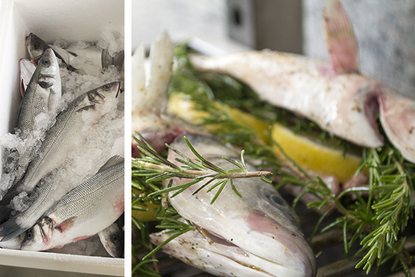 eerlijkereten cyprus vis